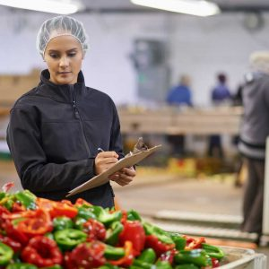 Woman inspecting peppers in plant.