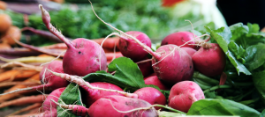 Macro level image of red radishes and carrots
