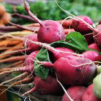 Macro level image of red radishes