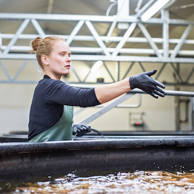 Young woman in gloves and an apron standing beside an aquaculture tank